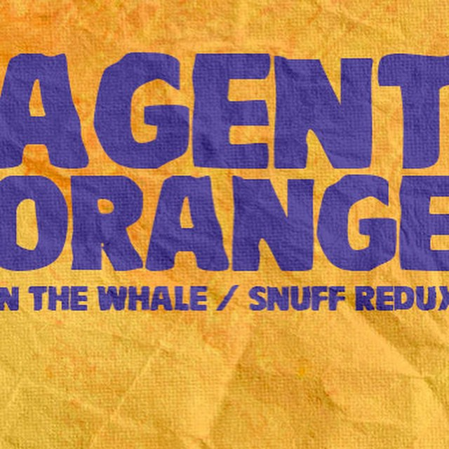 @radioboise Tuesday at @Neurolux​ is underway! OC punk/surf legends #AgentOrange​…